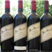Dunn Wine Diary_edited_resize