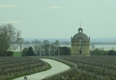 View of Chateau Latour from Pichon Lalande